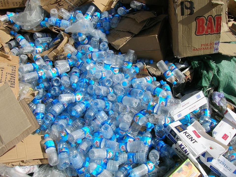 ECOplan Lector: noticias para analizar sobre el medio ambiente, el reciclaje y la ecología