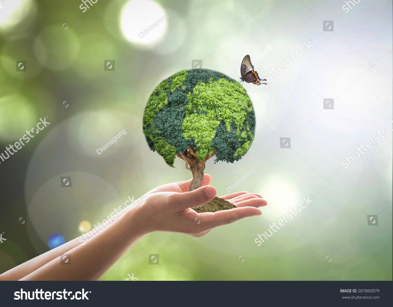 Ecoplan: análisis, creatividad y compromiso para mejorar nuestro entorno.